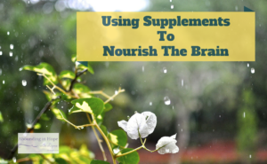 Using Supplements to Nourish the Brain