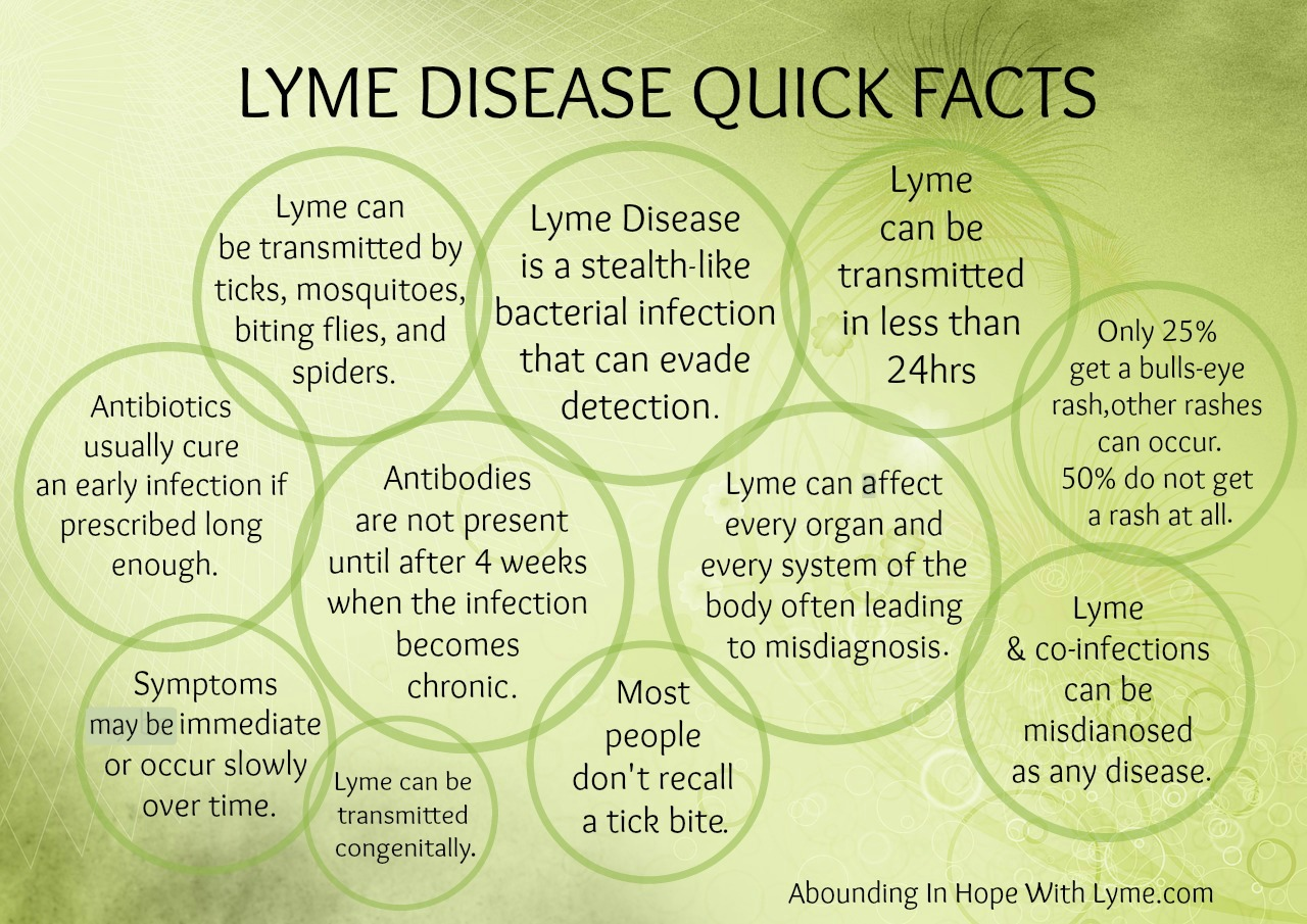 Lyme Disease Quick Facts Abounding In Hope With Lyme