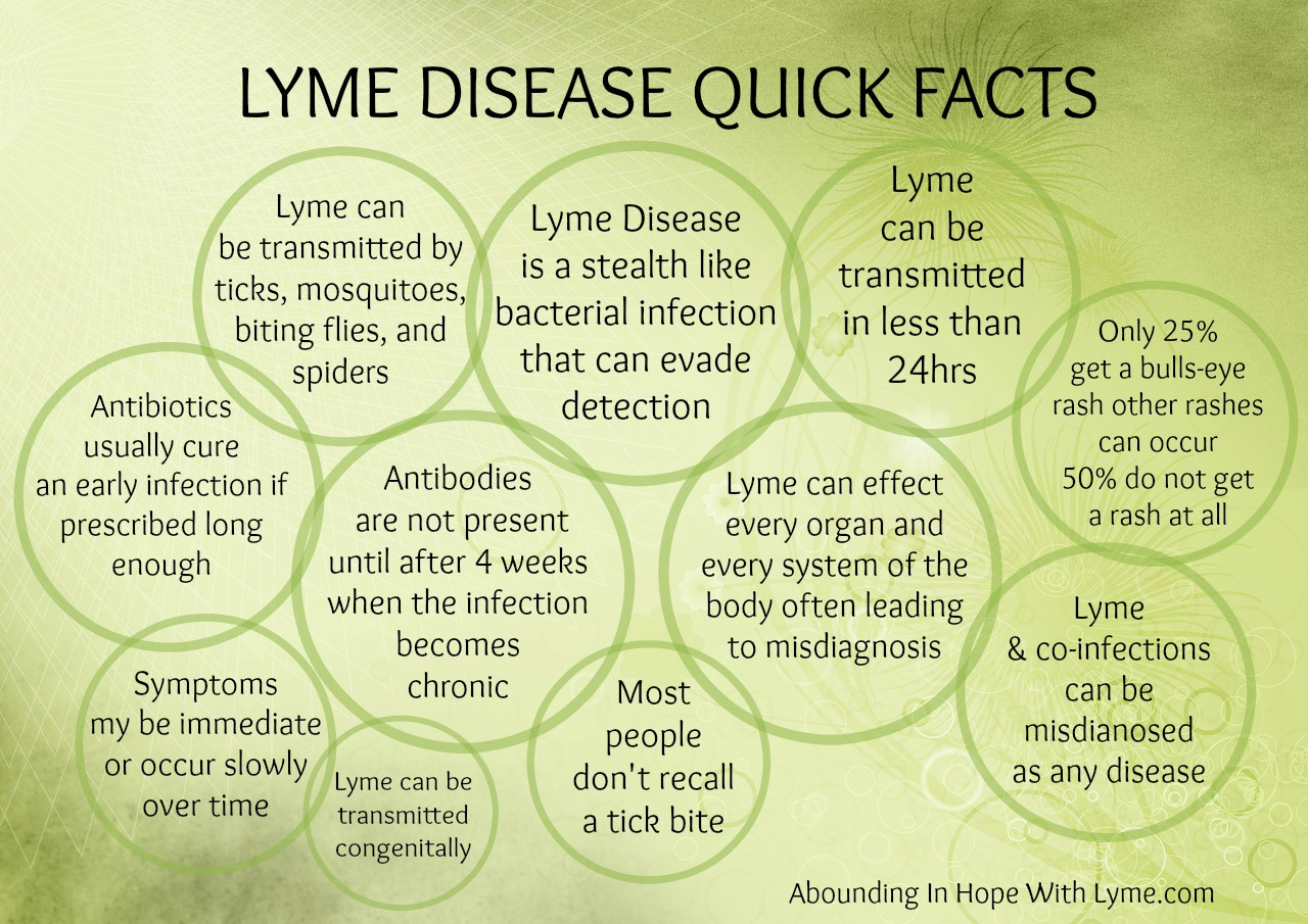 Lyme Disease Quick Facts on Home School Free Printables