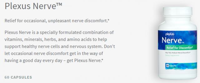 Plexus Nerve