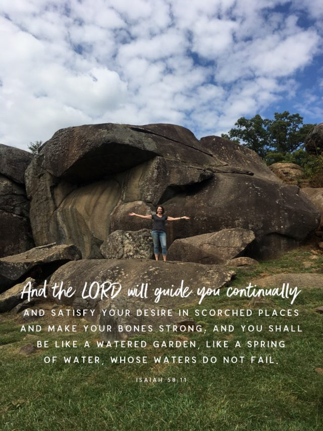 Tricia 4 weeks recovery at Devils Den in Gettysburg