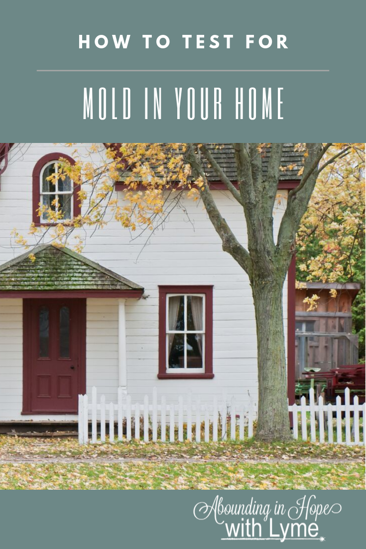 Home with Mold