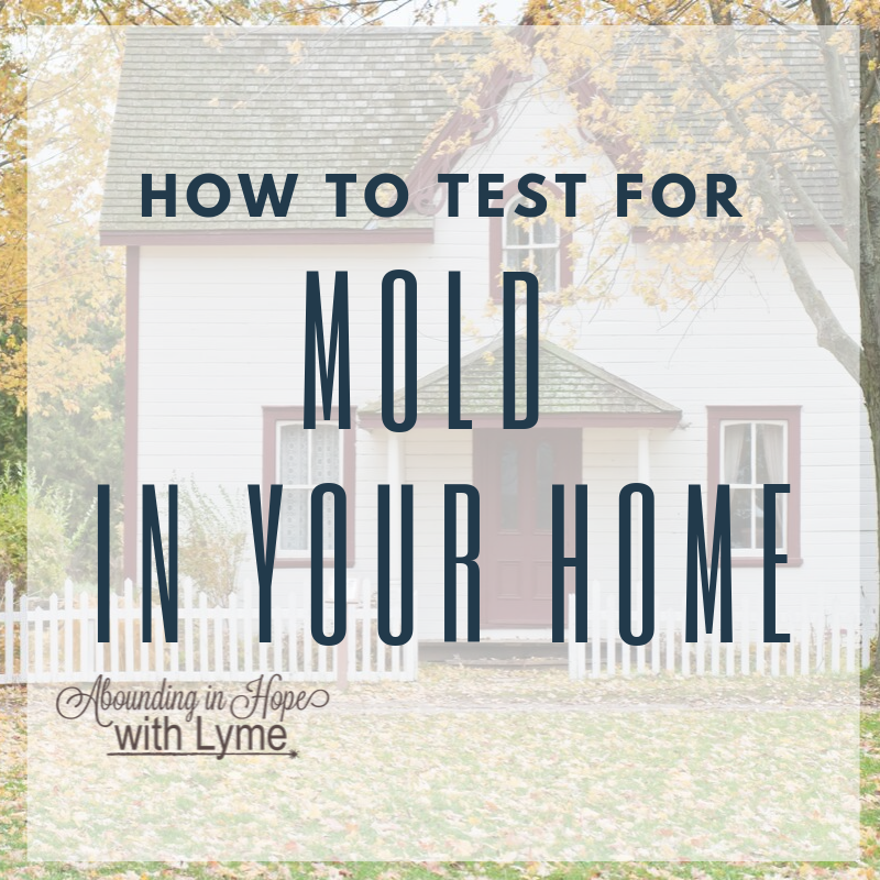 Testing Homes for Mold