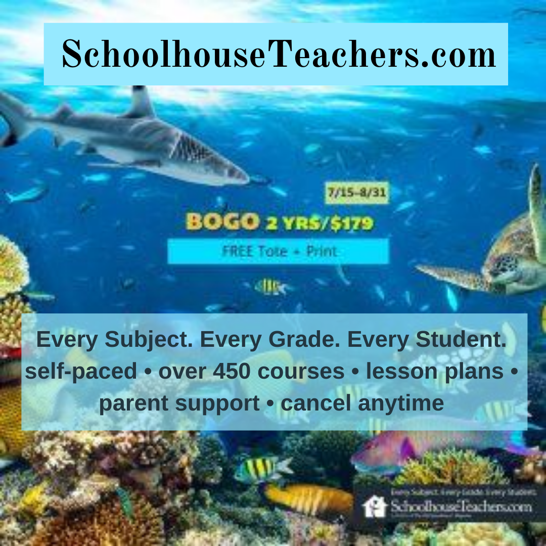 Schoolhouse Teachers Sale
